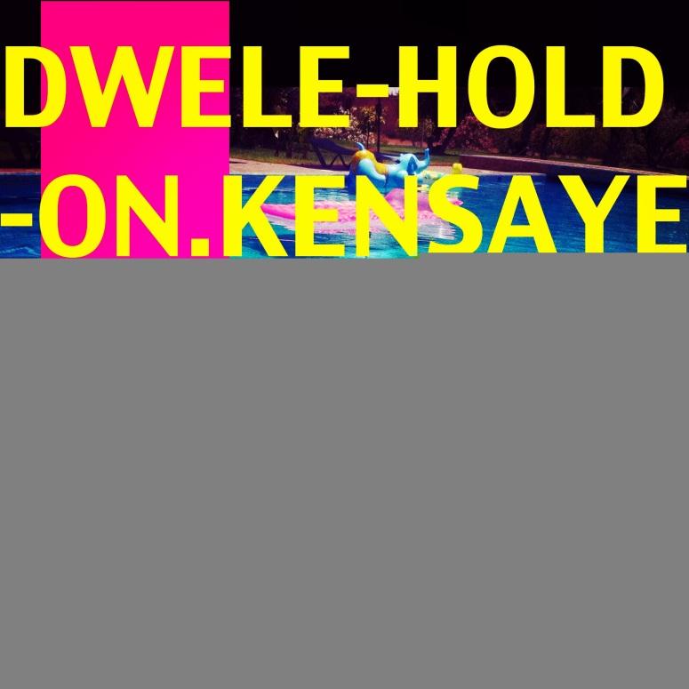 dwele photo (5)